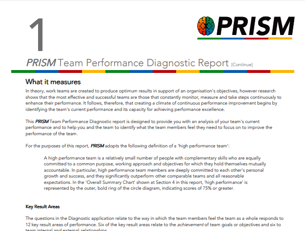 Prism Team Diagnostic Prism Team Performance Diagnostic Provides